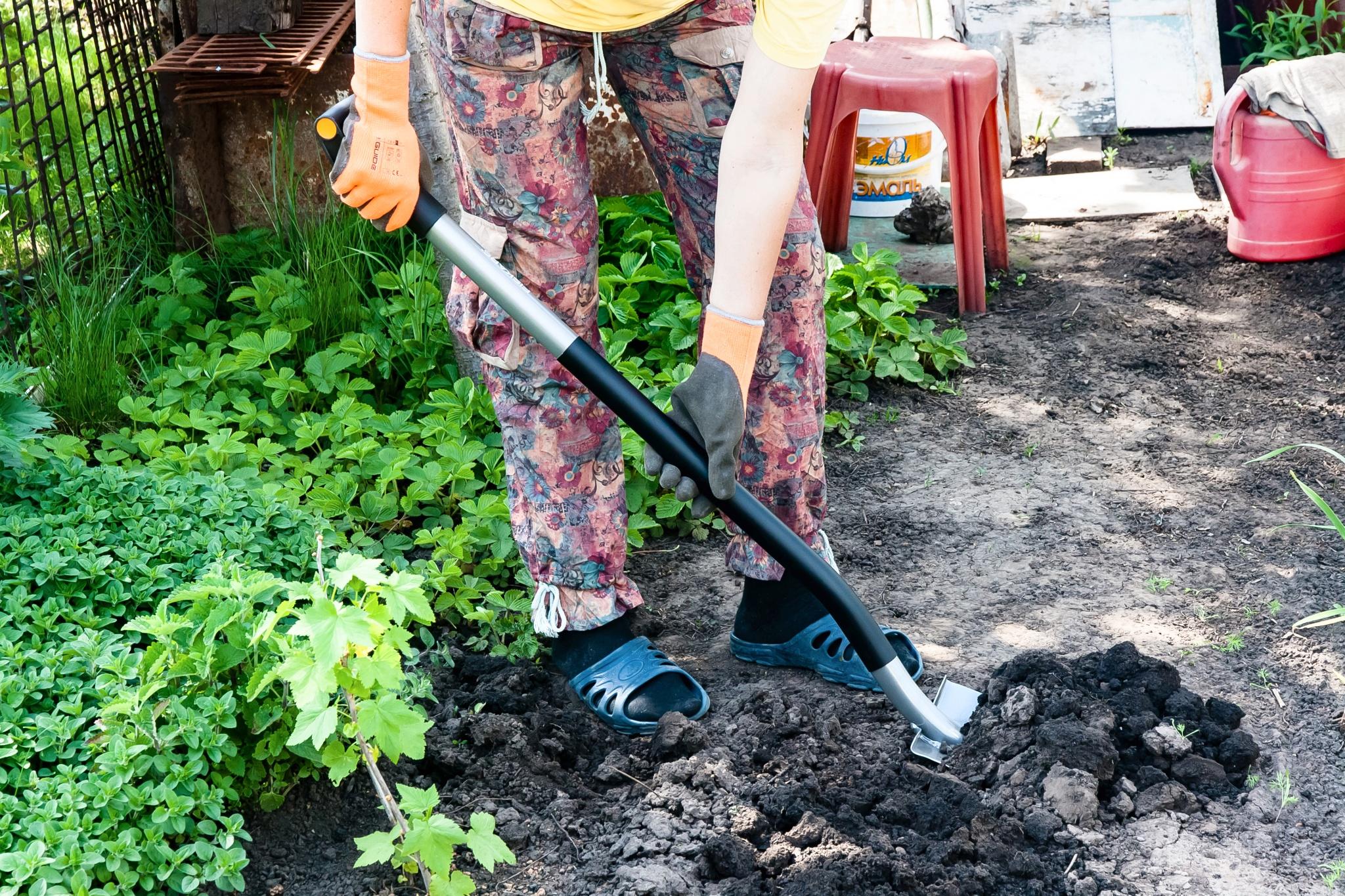 Дачникам на заметку: плюсы и минусы титановых лопат