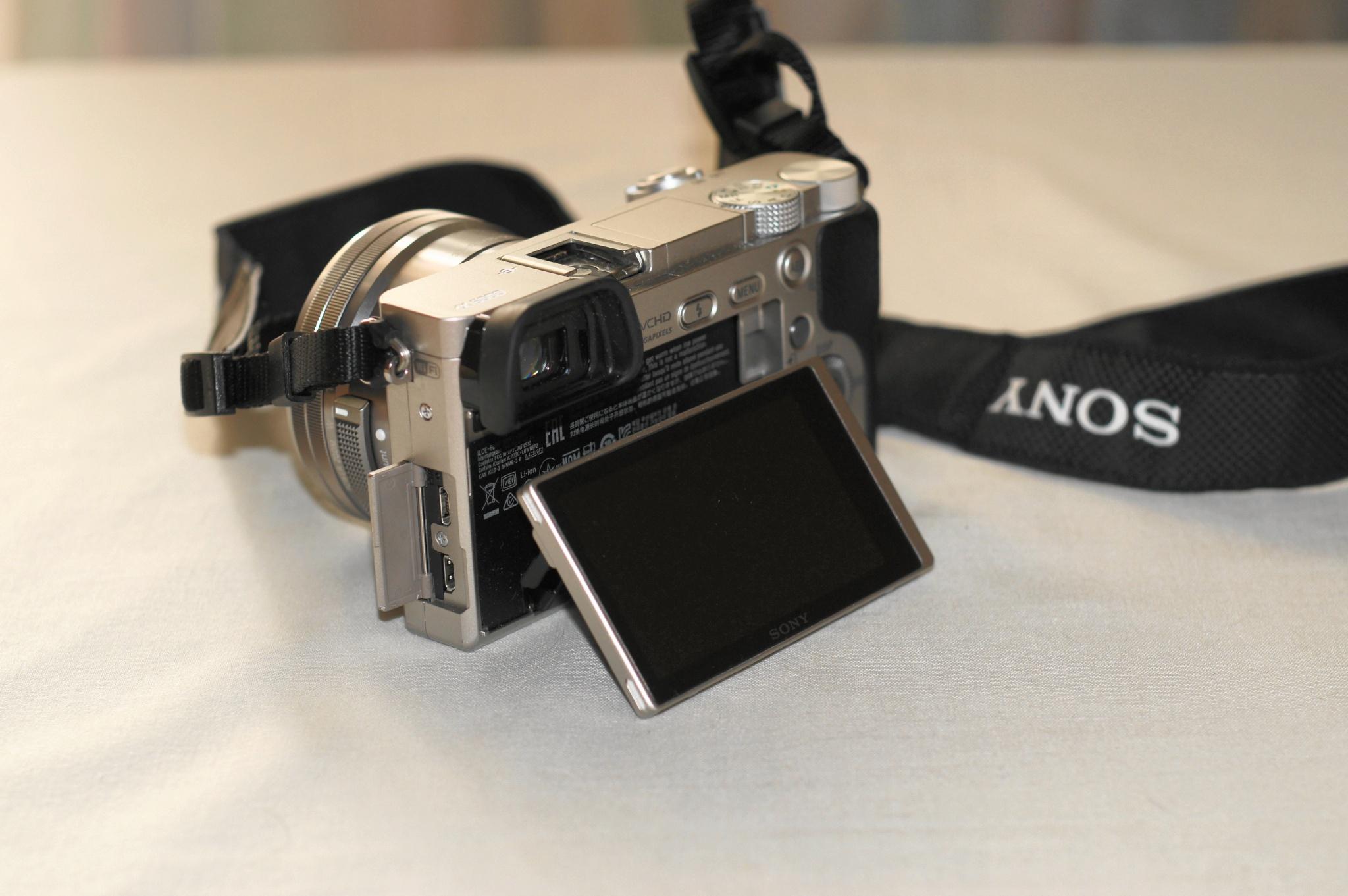 обзор цифровых фотокамер порей слегка пассеруйте