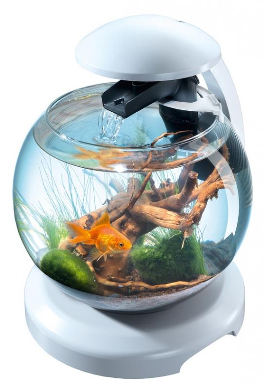 3784723f6eb1 Аквариум круглый TETRA Cascade Globe 6.8 литров, 27,9 диаметр, белый  Изображение 1