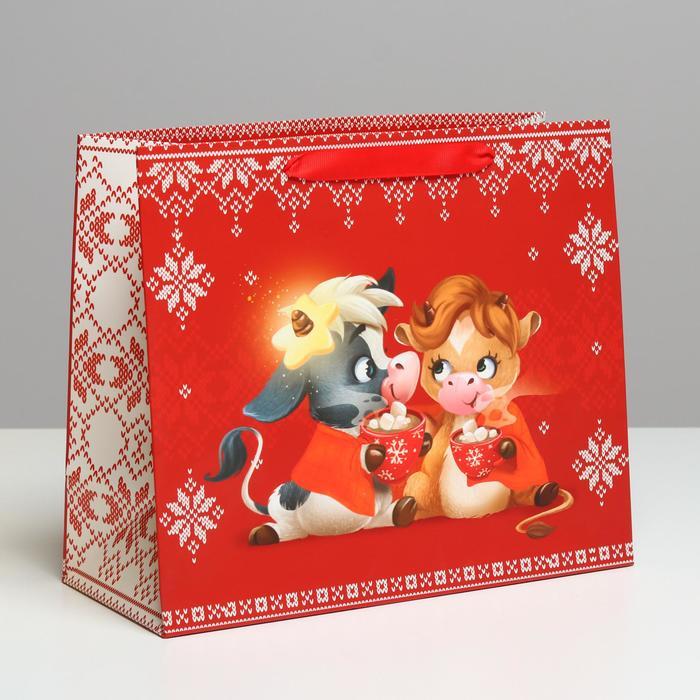 Пакет подарочный ДАРИТЕ СЧАСТЬЕ ламинированный горизонтальный «Тёплые объятия», ML 27 х 23 х 11,5 см — купить в интернет-магазине ОНЛАЙН ТРЕЙД.РУ