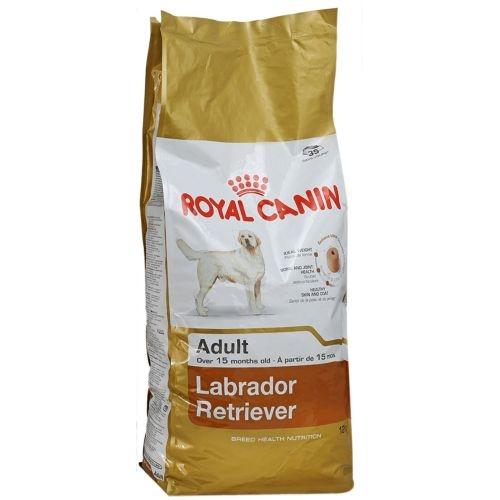 Сухой корм royal canin labrador