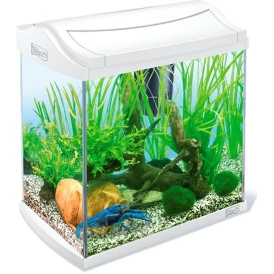 d5b2a11b0be9 Аквариум TETRA AquaArt Goldfish 30 литров, белый Изображение 1 - купить в интернет  магазине с ...